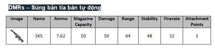 Sung-ban-tia-tu-dong-Designated-marksman-rifle